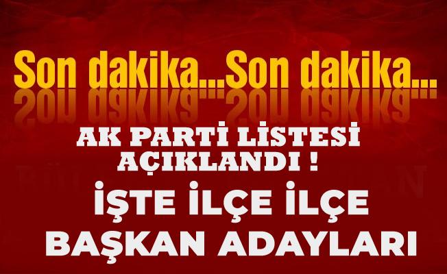 AK Parti Ordu listesi açıklandı.İşte ilçe ilçe başkan adayları