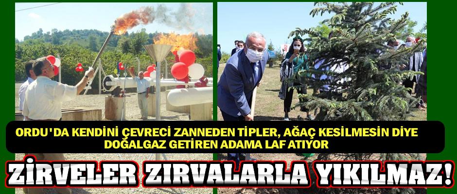 Ağaç kesmeyi en iyi bilen ve aynaya bakmaktan aciz tipler, ağaç kesilmemesi için Ordu'ya doğalgaz getiren adamı ağaç kesmekle suçluyor!