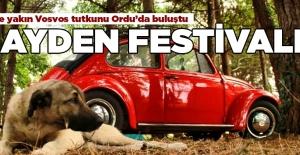 Wosvos Festivali başladı