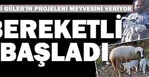 Hilmi Güler#039;in projesi bereketli...